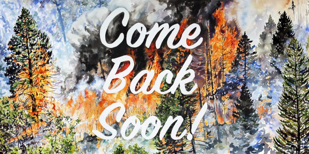 Wildfire Billboard Project Liz Toohey-Wiese